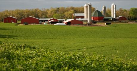 multiple red farm buildings in the distance of a lush green field