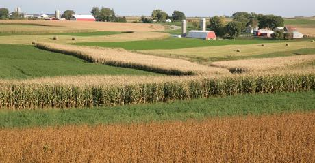 scenic view of multicolored fields with farmsteads on horizon