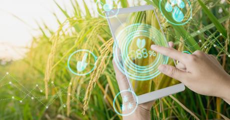 hands holding tablet with conceptual symbols in agricultural setting