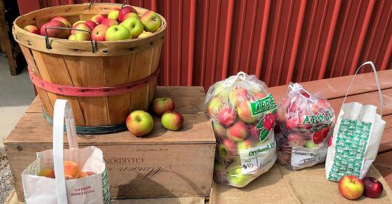 Agritourism offers great escape