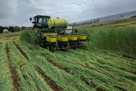 5 Stories not to miss: Commodity Classic, Cover crops and insects