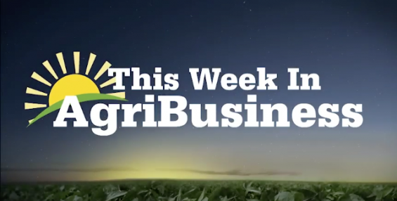 This Week in Agribusiness, Feb. 16, 2019