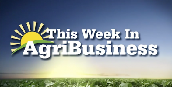 This Week in Agribusiness, August 10, 2019