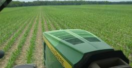 John Deere tractor in young corn field