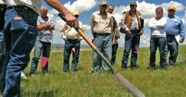group of farmers watching pasture management demo