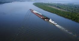 Shippers more active as farmers sell