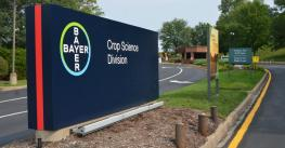 Bayer-sign-image.jpg