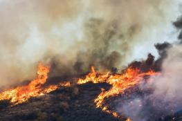 California-wildfire-GettyImages-1066673072.jpg