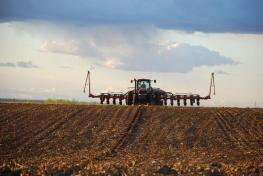 Tips for planting soybeans