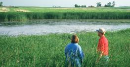 Two people looking at a wetlands pond