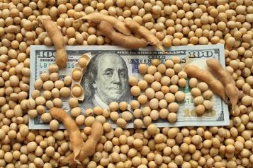 newsletter soybean income.jpg
