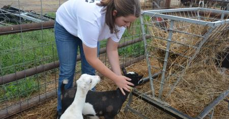 girl with baby goats