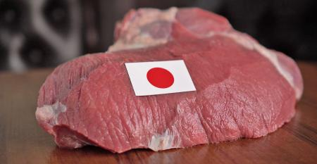raw meat and flag of Japan