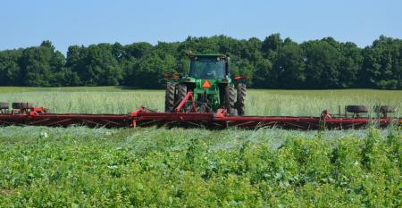 tractor crimping cover crop