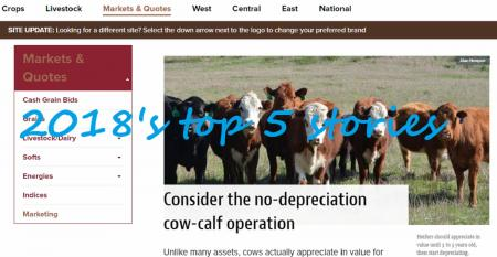 Beef Producer web page