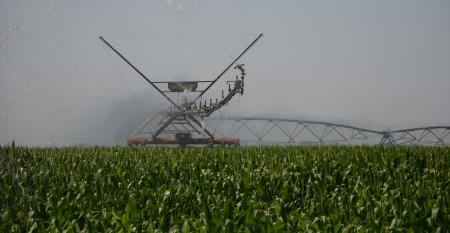 irrigation equipment in corn field