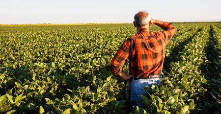 Farmer-In-Field-PointImages-iStock-Getty-Images-Plus-519364356.jpg