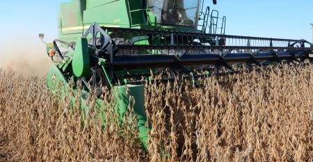 soybean-harvest-kilmer-SIZED.jpg