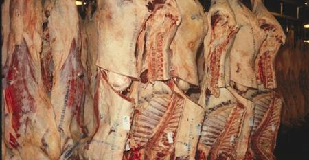 Extremely tight supplies keep beef prices firm