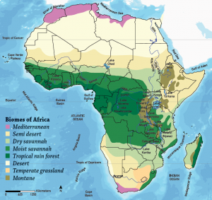 Africa biomes