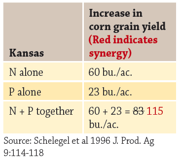 increase in corn grain yield, Kansas