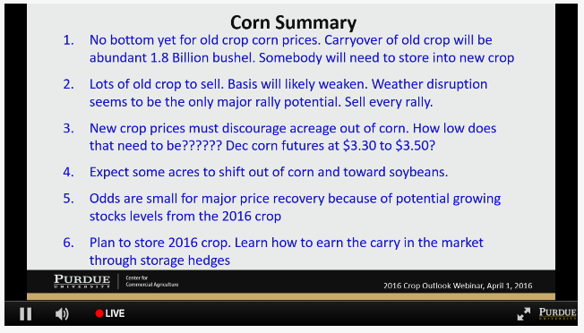 corn outlook for 2016